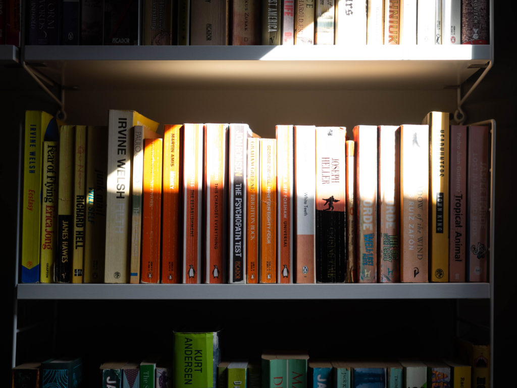 Afternoon light on bookcase.