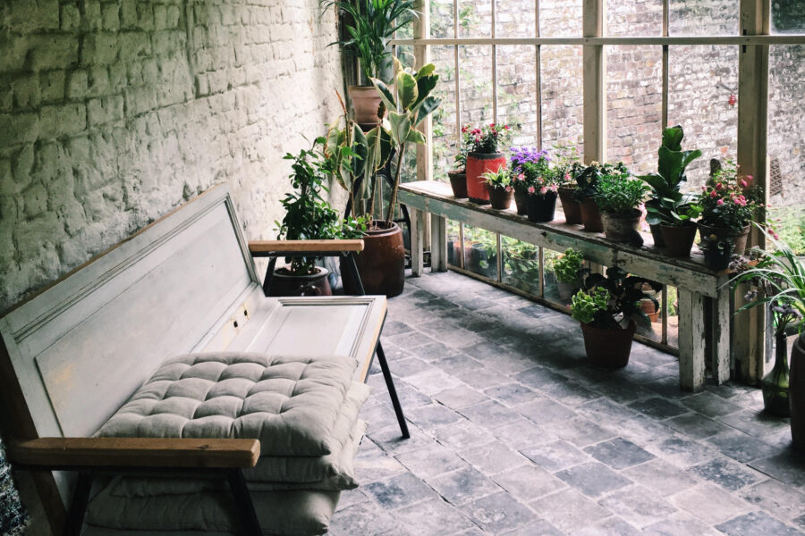A bench in an orangerie greenhouse.