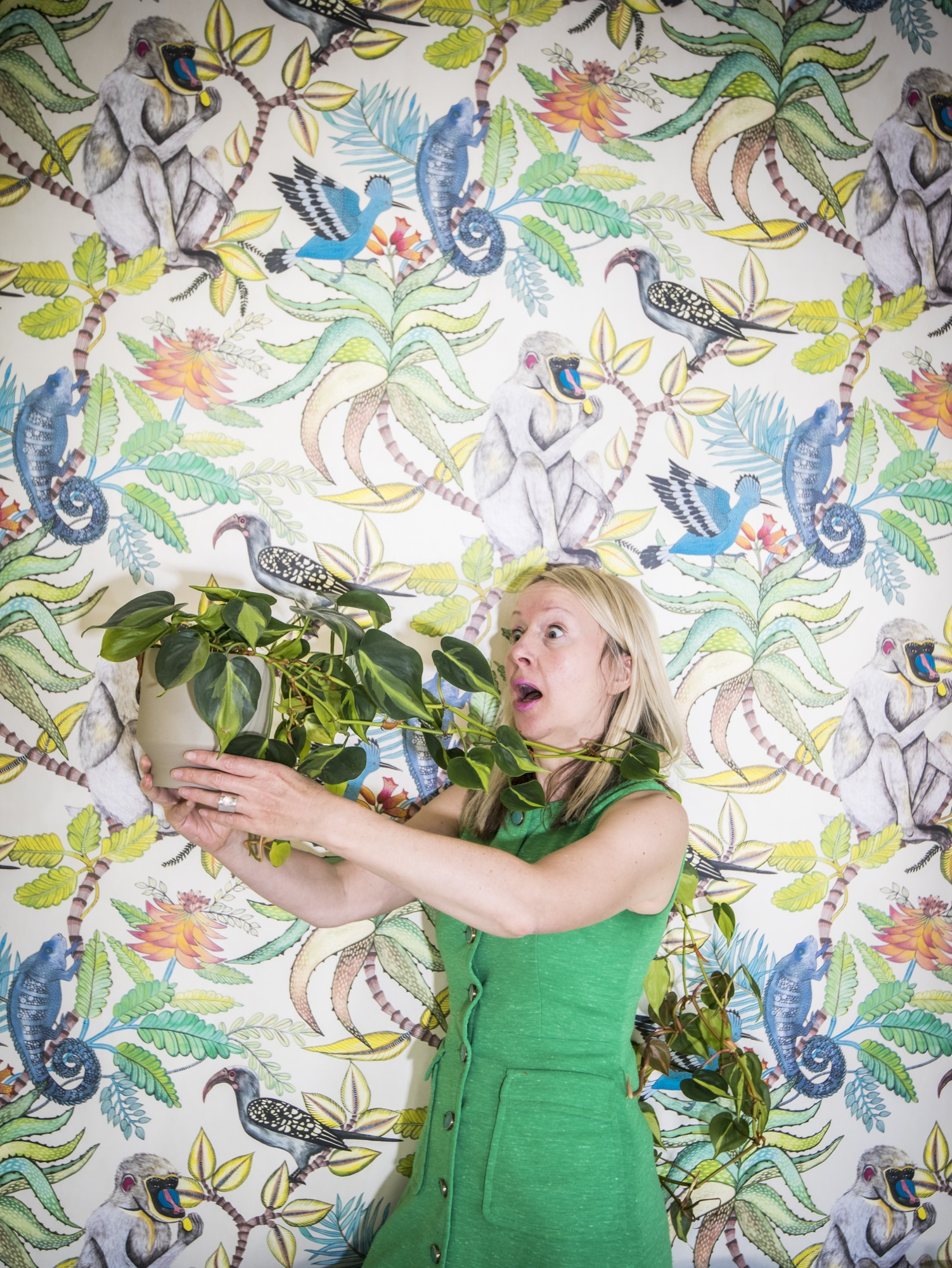 katya willems instagram expert and a plant.
